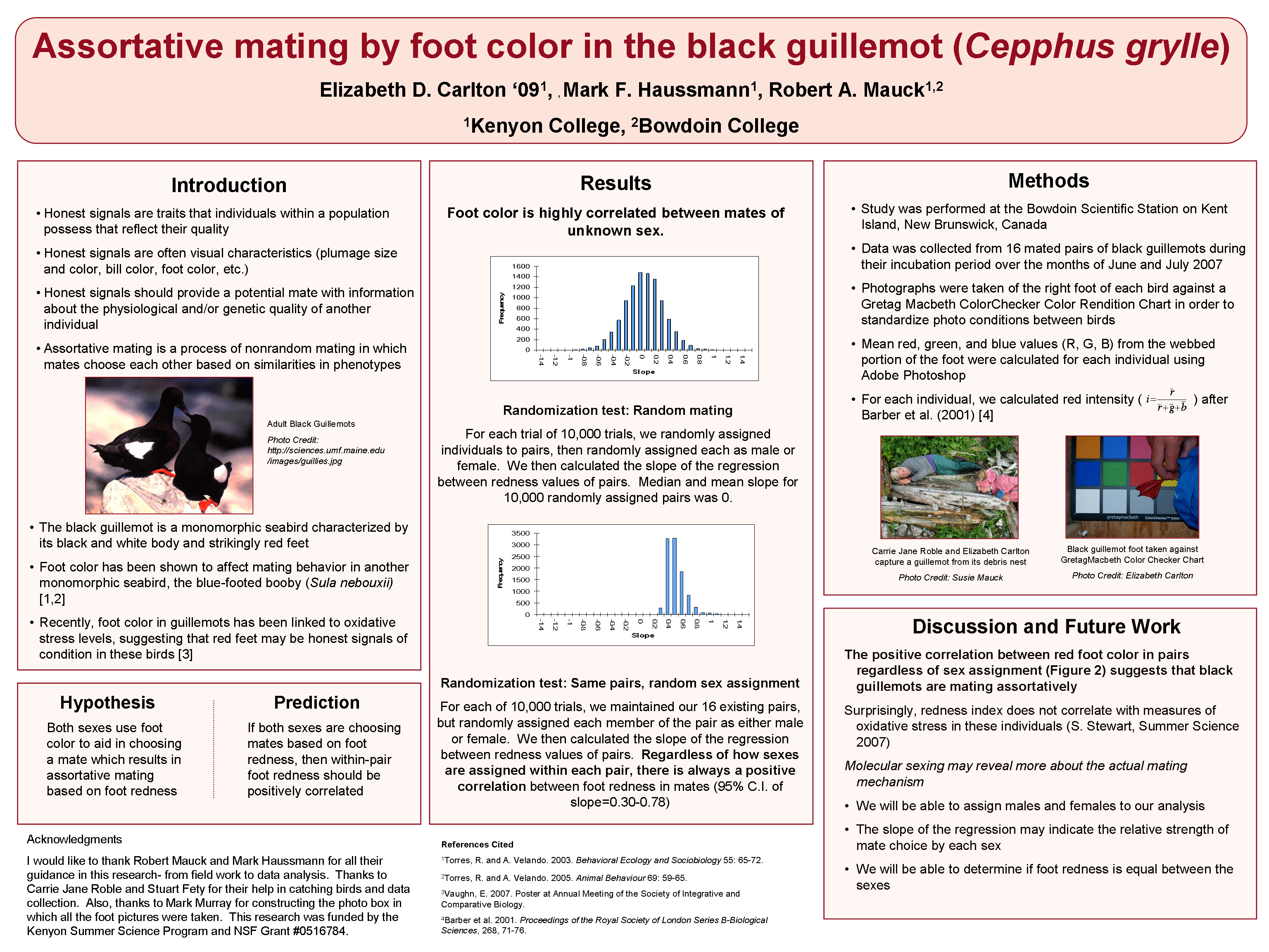 scientific poster design and layout fonts colors contrasts ...